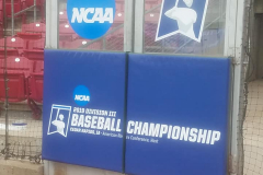 Division III Baseball Championship decals on door padding
